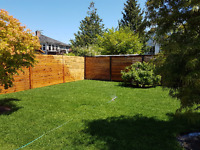 $30 · 20% OFF FIRST DAY LANDSCAPING AND LANDSCAPE DESIGN SERVICE