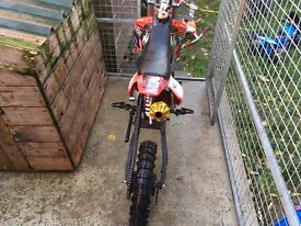 Big framed 125cc pitbike