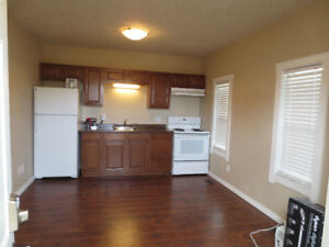 Beautiful 1 BDRM In The Downtown Area. Some Pets Welcome.