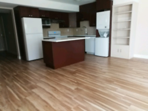 Brand new 2 rooms basement in Burke mountain available now