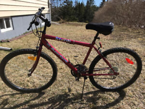 """BICYCLE  26"""" -15 speed"""