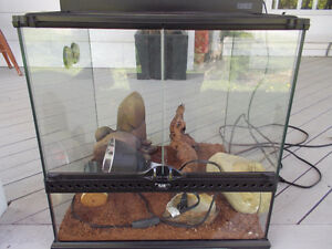 Reptile home and all accessories