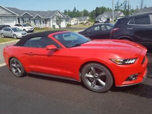 2016 Mustang Sport Convertible V6