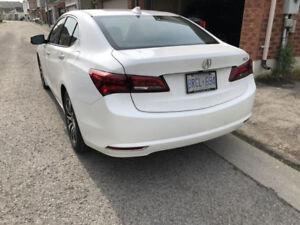 2017 Acura TLX Lease Takeover- LOW PAYMENT- $1000 CASH INCENTIVE