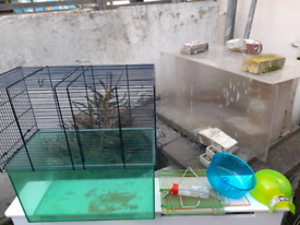 Gerbils/mice cage and accessories