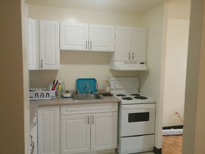 Spacious 1 bedroom apt winter sublet (+option for summer) Kingston Kingston Area image 1