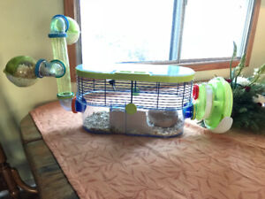 Hamster and Cage For Sale