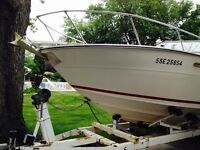 It's a steal - 24' Sea Ray - great fishing boat - plenty of room