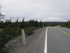 1 A MILLVILE ROAD, AVONDALE..20 ACRES, St. John's Newfoundland image 16