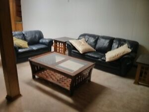 Black Couch and Love Seat