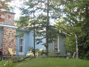 Weekly cottage cleaning - Sauble Beach