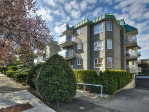 2 bed 2 ba Condo on Quiet Tree Lined Street near Quadra Village