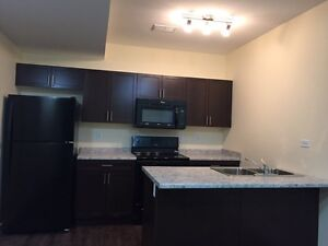 Excellent Rental Opportunity in Rosewood Basement Suite for 875
