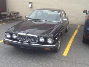 Classic 1983 Jaguar XJ6