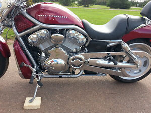 HARLEY V-ROD  *** LOW MILES***