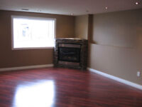 BASEMENT RENOVATIONS~GET $25 K TO HELP YOU~PAINTING SERVICES