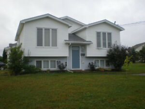 -Moncton North End- Top half of house- Own yard, driveway,deck--