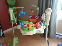 Exerciseur Fisher-Price Rainforest