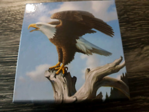 Bald Eagle 100 for $100 Silver Coin