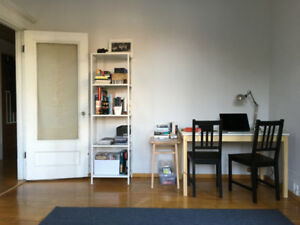 3 1/2 À louer - For rent - Plateau Mont-Royal - 1100$