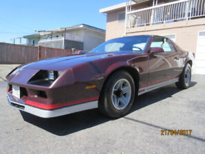 Immaculate 1982 Camaro Z28 Limited Edition