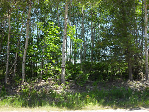 BUILDING LOT (#2) - FOR SALE