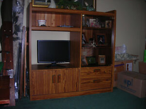 PALLISER ENTERTAINMENT UNIT Kitchener / Waterloo Kitchener Area image 1