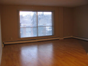 Renovated 1BR centrally located in Sunalta