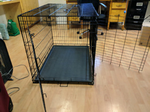 "42"" Top Paw Double Door dog crate"