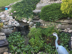 Fish and pond products
