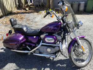 2001 Harley Davidson Sportster XL883C