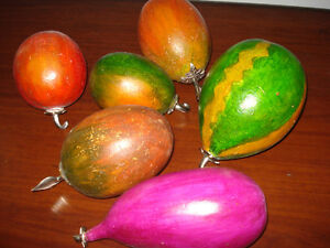 Dried Gourds to Create Everlasting Fruits with real silver stems
