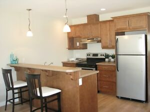 Modern townhouse for rent in Steinbach!