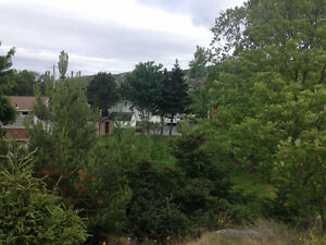 Land for Sale in the Heart of Brigus!!!! St. John's Newfoundland image 4