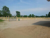 NOW BOOKING:Riding Lessons in our New area.