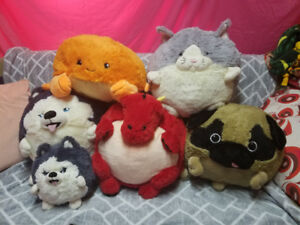 Squishable Stuffed Animals - Cat, Dogs, Crab, Dragon