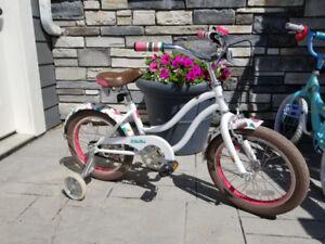 Girl's Designer Electra Bike