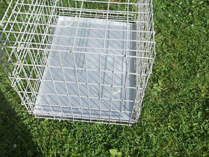 Steel folding animal crate