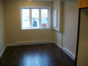 Furnished Apartments in Placentia Near Long Harbour, Argentia St. John's Newfoundland image 7