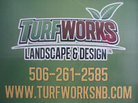 Certified and experienced landscapers ready to help you!!