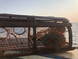 Used 3 bow lobster traps