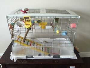 2 MALE BUDGIES (BIG CAGE, FOOD, AND TOYS INCLUDED)