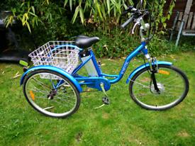 Ladies electric tricycle.