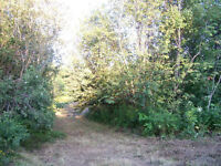 SHEDIAC:  PRE APPROVED BUILDING LOT FOR SALE