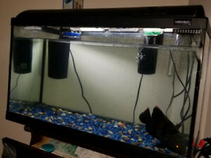 3 fish aquariums take alook @ ad for prices