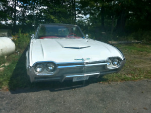 1961 T-Bird For Sale