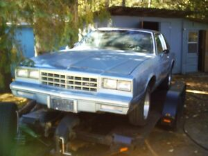 1981 monte carlo roller-project car