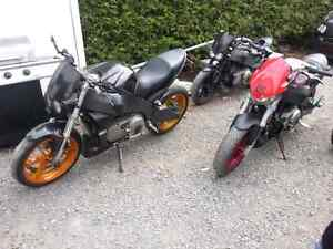 Wanted 2008^ Buell Dead or alive