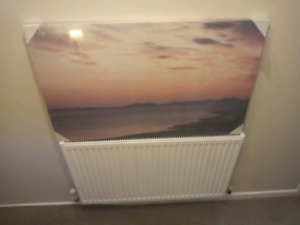 Brand new picture in package, 1 meter long 600 wide