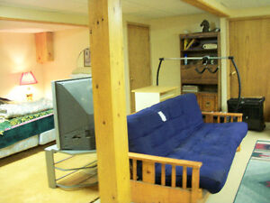 large room in basement for rent